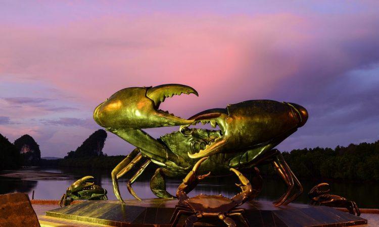 big-crab-1140x640